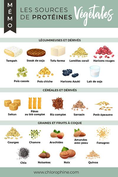 fiche mémo, les sources de protéines dans l'alimentation végétale